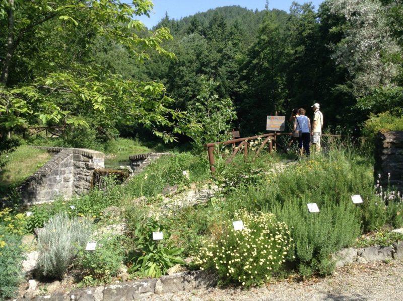 Corniolo Riapre Il Giardino Botanico Di Valbonella